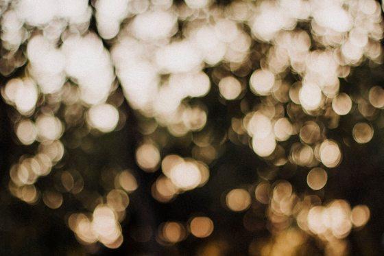 pexels-photo-564908